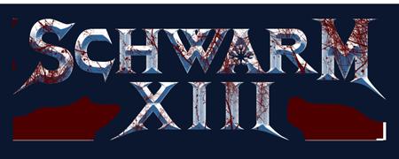 Schwarm-13